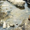 Rocks along the creek were turned over to see how much oil was absorbed